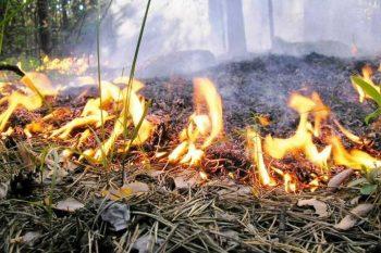 Наступил пожароопасный период
