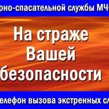 Пожарной охране России исполняется 370 лет