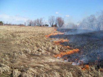 Спасатели Первоуральска предупреждают о необходимости соблюдения правил безопасности в связи с жаркой погодой