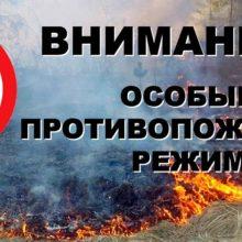 Особый противопожарный режим продлён до 25 июня