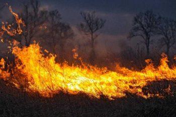 Памятка о соблюдении мер пожарной  безопасности в пожароопасный период.
