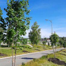Для жителей Свердловской области открылась «горячая линия» по вопросам формирования комфортной городской среды