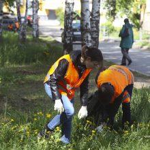В Первоуральске начали работать «Отряды мэра»