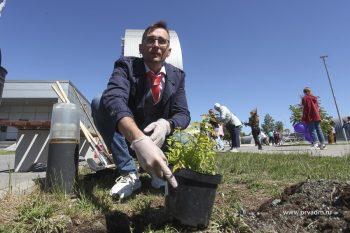В Первоуральске в третий раз прошла экологическая акция «НаВырост»