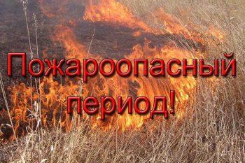 МЕТОДИЧЕСКОЕ ПОСОБИЕ по выполнению противопожарных мероприятий при подготовке к пожароопасному сезону