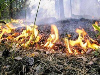 В Первоуральске пройдут рейдовые осмотры в связи с началом пожароопасного периода