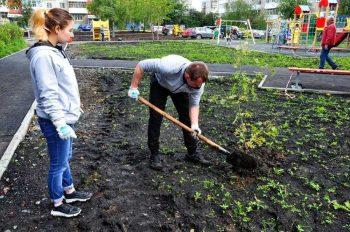 В первоуральском дворе силами волонтёров появились зелёные насаждения
