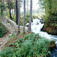 В Первоуральске проходят мероприятия Года экологии