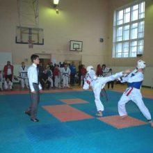 В Первоуральске пройдет 20-й Всероссийский турнир по тхэквондо