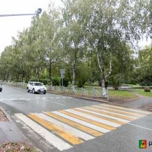 Состояние тротуаров и пешеходных переходов рядом со школами проверила специальная комиссия