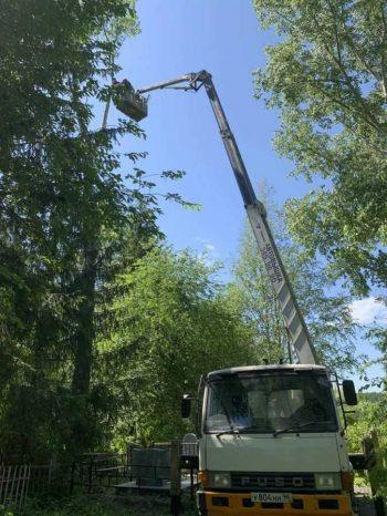 На кладбищах Первоуральска ликвидируют опасные деревья