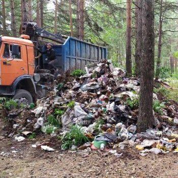 22 несанкционированные свалки ликвидированы в городском округе в этом году