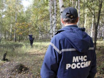 В Первоуральске спасатели оперативно разыскали потерявшуюся в лесу девочку