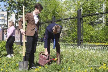 Выпускники высадили молодые кедры на территории школы №2