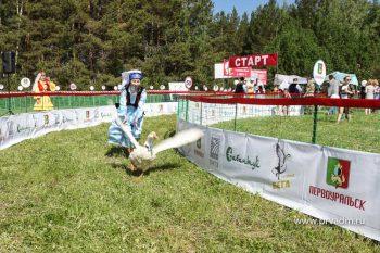 Первоуральские гуси произвели фурор на областном Сабантуе