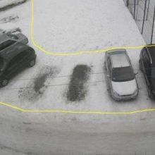 Штрафы за парковку на газонах пополнили бюджет города на 194500 рублей