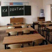 Со 2 по 8 февраля в школах вводится карантин